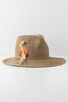 25503b2d3d410 Lovely Beach Hats from Anthropologie -